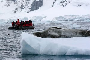 Paradise Bay, Lemaire Channel, Antarctica 518.jpg