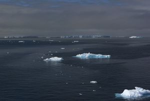 c25-Antarctic sound.jpg