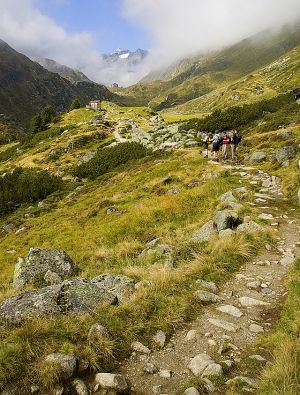 Path to Franz Senn hut.jpg
