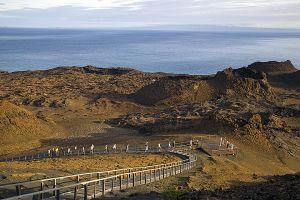 Bartholome, Galapagos Islands 081.jpg