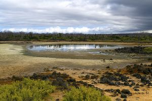 Dragon Hill, Santa Cruz Island, Galapagos 029.jpg