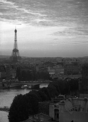 Parisian sunset -BW.jpg