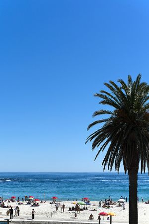 201203_South_Africa_0115.jpg
