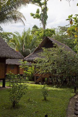 Reserva Nacional Tambopata 027.jpg