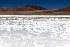 Lagunas Miscanti Miniques Tuyacto Aguas Calientes 185.jpg