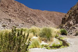 Machuca to Rio Grande hike 018.jpg