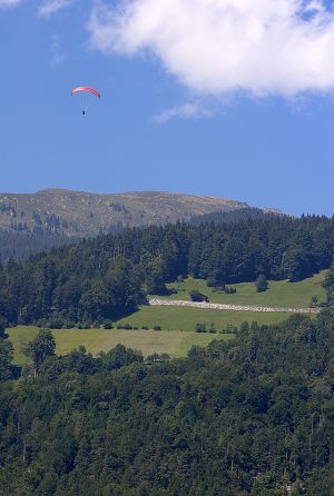 DIG-Paraglider Interlaken.jpg